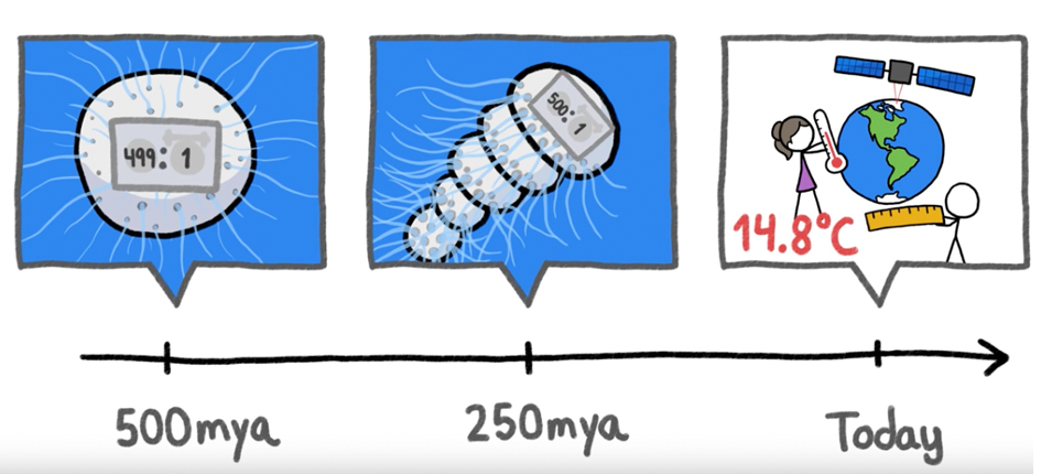 "MinuteEarth Video: ""How This Sea Shell Knows the Weather in"